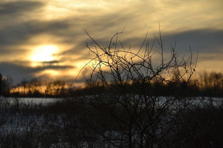 Countryside Sunset OpenEdit