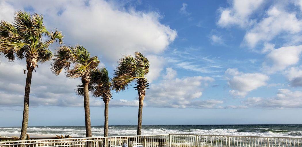 Windy Ocean Terrace