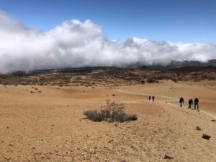 Hiking, Volcano Teide, Tenerife 🇪🇸 Nofilter Hiking Rock - Object Clouds Cloud - Sky Mount Teide Volcano Teide Teide National Park Tenerife SPAIN Sky Land Cloud - Sky Nature Real People Day Group Of People Landscape Scenics - Nature Tranquil Scene Beauty In Nature Tranquility Outdoors