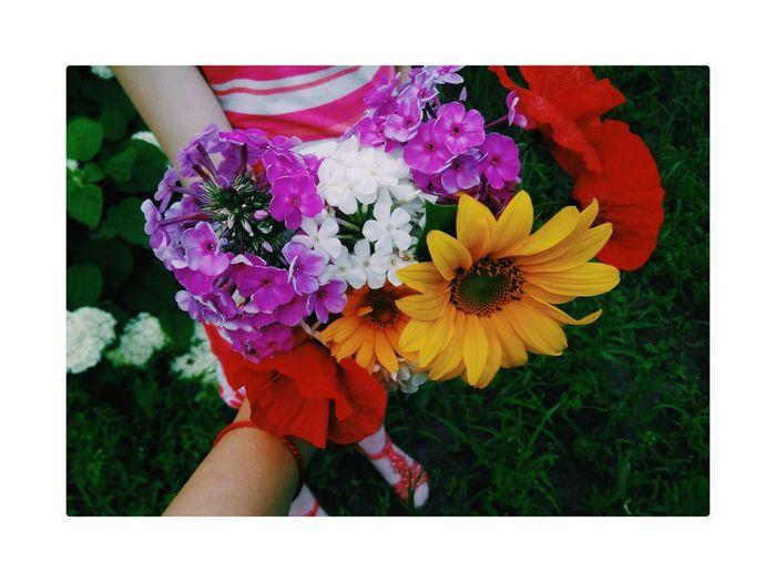 Flower Flower Head People Day Beauty In Nature Only Women First Eyeem Photo