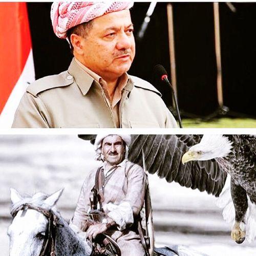 King Sarok Barzani
