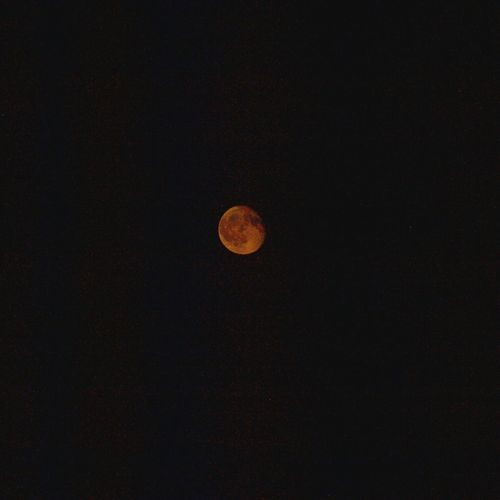 August moon from Dartmouth, Nova Scotia Moon Astronomy Planetary Moon Night Tranquil Scene Moon Surface Scenics Tranquility Beauty In Nature Nature Nova Scotia, Canada August2017