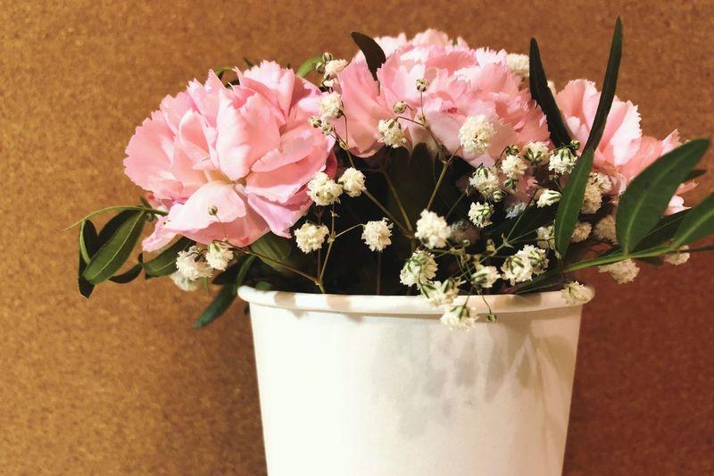 Flowers in