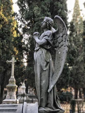 Cemetery Angel Wings Statue Grave Cementerio Tumba Dead Muerte Sad Triste