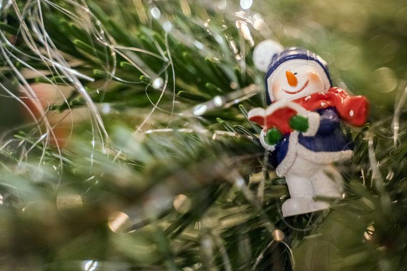 christmas time Representation Human Representation Male Likeness Toy Selective Focus Holiday Celebration Christmas Creativity Art And Craft Female Likeness No People Plant Nature Figurine  Decoration Close-up Day Holiday - Event