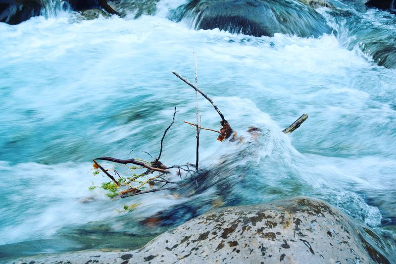 Beauty In Nature Blue Blue Water Branches Exposure Flow  Flowing Finding New Frontiers Flowing Water Motion Nature Nature Photography No People Outdoors Pirineos River Riverside Scenics Speed Water Water_collection Waterfall Wet