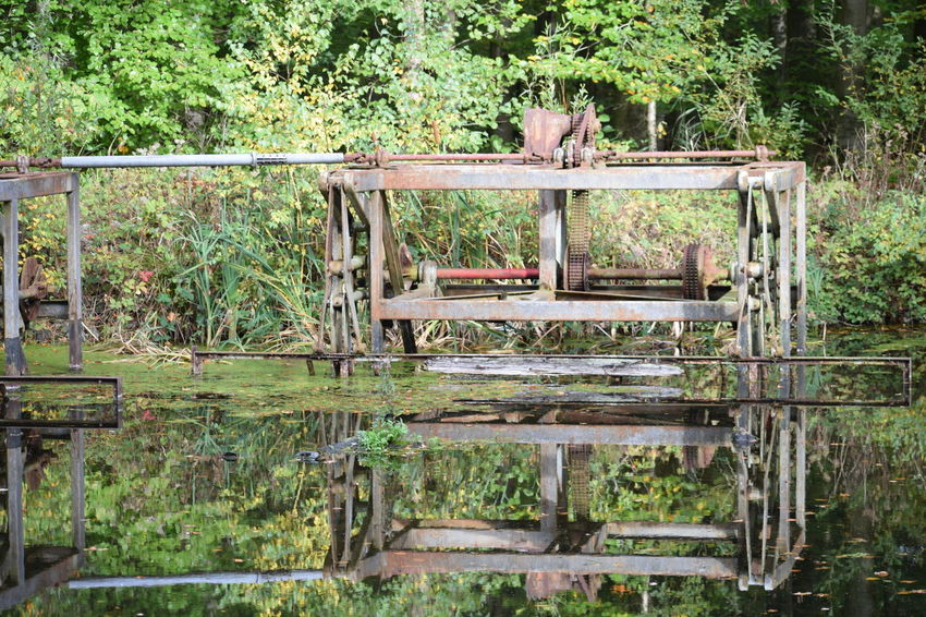 old metal in wood Plant Tree Day Wood - Material No People Nature Reflection Water Forest Lake Landscape Outdoors Old Green Color Rural Scene Seat Remote Environment Relaxation
