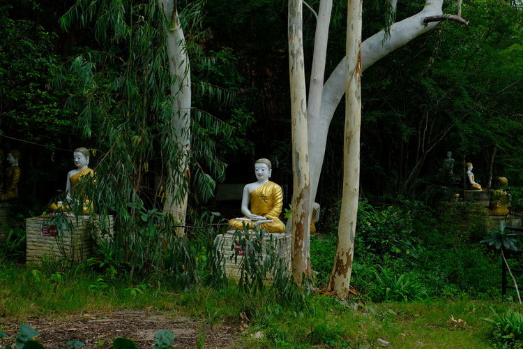 Statue of man sitting on seat in forest