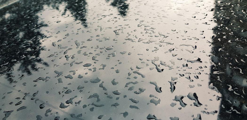 Raindrops of gray Reflection Backgrounds Full Frame Water Close-up Sky Surface Rainy Season RainDrop Rainfall Rain