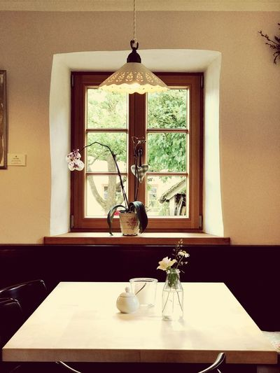 Table Home Interior Indoors  Vase No People Home Showcase Interior Domestic Room Flower Nature Day Cafe Tables Bavaria