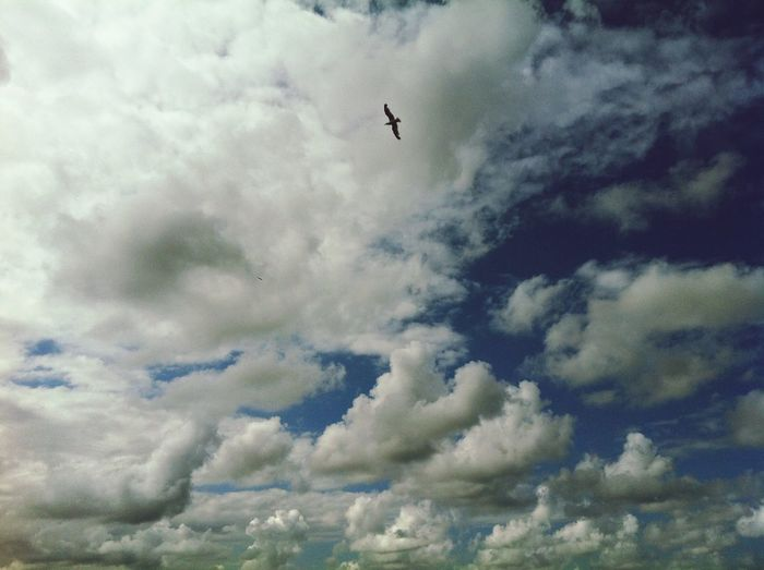 Sky And Clouds Photography