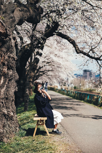 Sakura Tree Full Length Real People One Person Plant Lifestyles Leisure Activity Young Adult Nature Day Casual Clothing Women Adult Sitting Outdoors Side View Young Women Focus On Foreground Clothing Sakura Sakura Blossom Sakura Trees