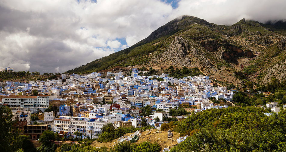 Blue painted houses in Chefchaouen, Morocco. Chefchaouen Chefchaouen Medina Morocco MoroccoTrip Architecture Built Structure Building Exterior Building City Residential District Plant Nature Town Tree House Day Outdoors Cityscape TOWNSCAPE