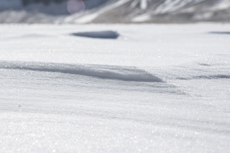 Close-up of snow covered land