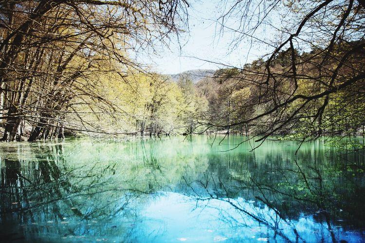 Turkey Mark3 Canonphotography Nature Lightroom Trees Green Blue Nature Photography Naturelovers Lakeshore Lake View Lake Yedigöllermilliparkı Yedigoller Bolu