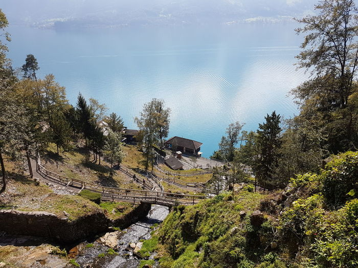Ich musste mal raus. Water Tranquil Scene Reflection Non-urban Scene Outdoors Sunny Day Lake View Lake Seascape Wasser Tree Water Tranquil Scene Growth Reflection Scenics Tranquility Nature Calm Beauty In Nature Weg St. Beatus Caves Switzerland Tourism