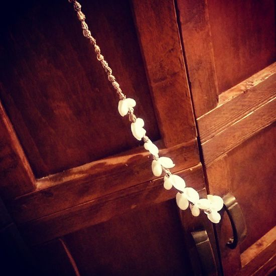 My beautiful sea shell lei a beautiful lady gave me last night. Hattiesburlesque Girlsrule