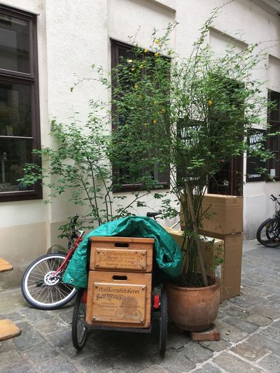 Transportation Built Structure Architecture Plant Building Exterior Mode Of Transportation Day No People Stationary Land Vehicle Building Outdoors City Potted Plant Street Bicycle Nature House Green Color Residential District Wheel