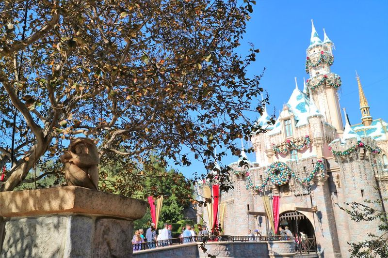 Disney California MerryChristmas Slepping Beauty Castle Disneyland Owl