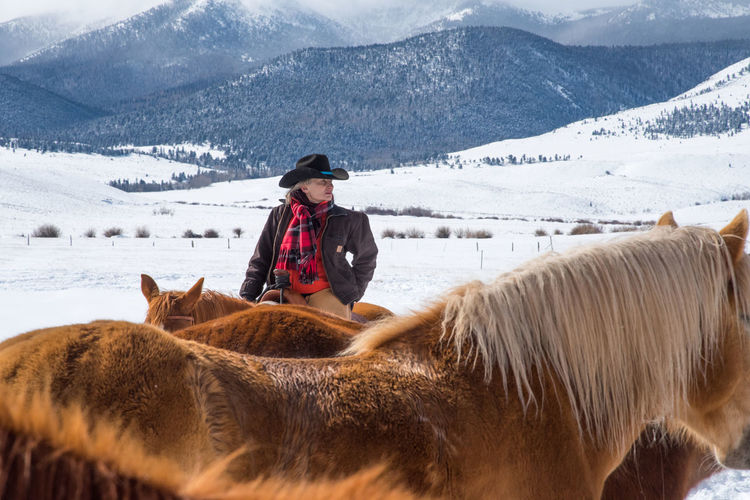 Feb 2019 - Music Meadows Ranch Colorado Cowgirl Ranch Life Working Animal Cowboy Cowboy Hat Scarf Herd Of Horses Winter Snowcapped Mountain Domestic One Person Day Clothing Mountain Domestic Animals Adult Herbivorous Outdoors Nature Horse Themes Mammal Livestock