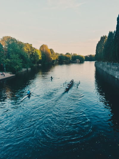 Water River Autumn Rowing Rowing Boat Hamburg Alster Calm Evening Sport Rowing Rowboat Boathouse Crew Outrigger Paddling Aquatic Sport