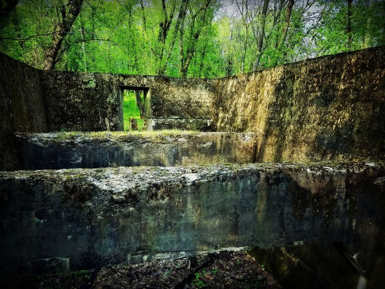 Ruins Ruins Architecture Architecture Building Reclaimed By Nature Nature History Historic Outside Outside Photography Outdoors Outdoor Photography Woods Forest Marietta Pennsylvania