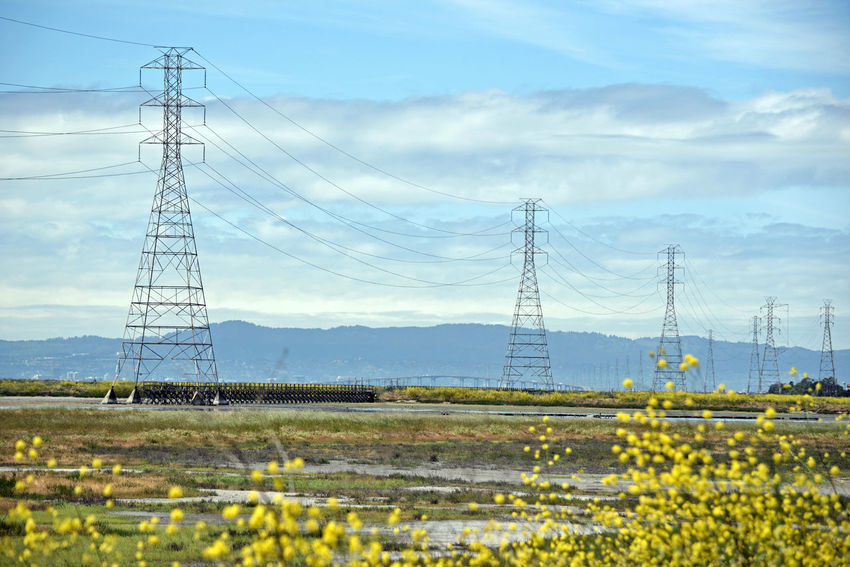 Edens Landing 3 Ecological Reserve Hayward, Ca. Save The Bay Wetlands Lowtide  Restored Marsh Tidal Wetlands Salt Ponds Native Grasses Power Lines Power Towers Catwalk San Mateo Bridge Marin Headlands Landscape_Collection Landscape Landscape_photography