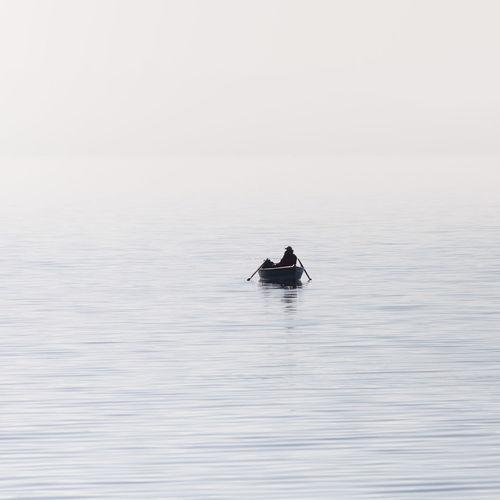 Swan swimming in sea against clear sky