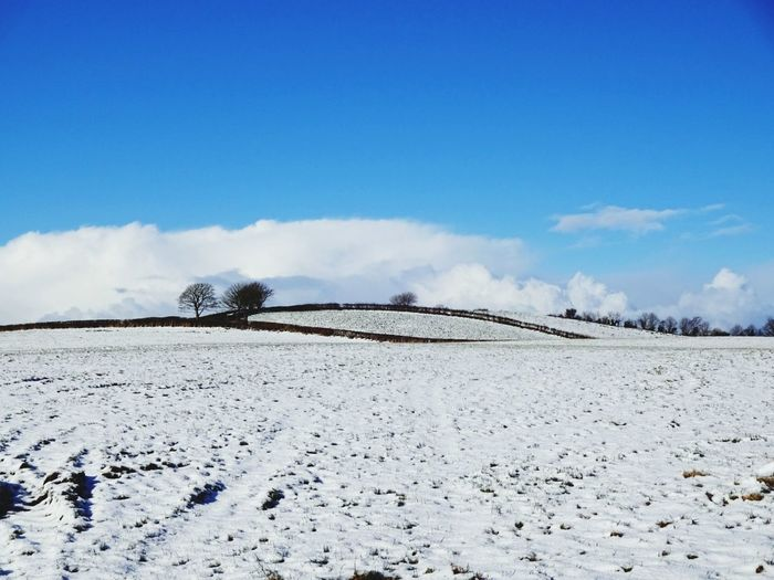 Blue Sky Snowy Scene Snow ❄ Northern Ireland Rural Scene Countryside Beautiful Beauty In Nature Colour Observing Nature Filter Watching Memories Outdoors Nature Day Sky Landscape Cloud - Sky No People Scenics Tranquility