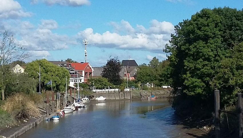 Sunny day Altes Land Nature Elbe River Elbe October 2016 Autumn2016 Hamburg Hamburgnaturepic