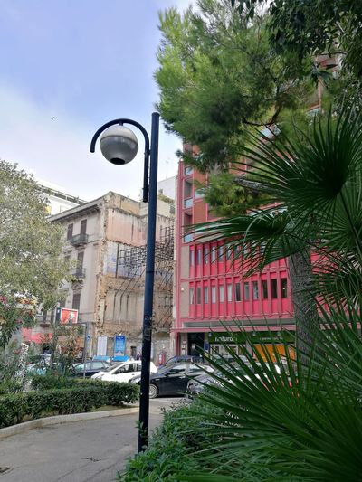 Tree No People Architecture Day Letstravel Building Exterior Passing By Italy Travel Destination Lets Travel Italia Street Lamp Pinkbuilding Green Greenplants Bari Park enjoy colors
