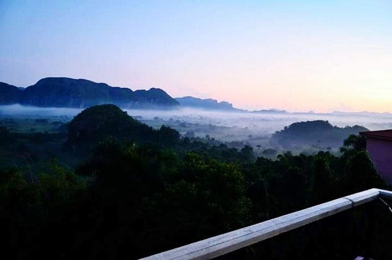 Mountain Tree Landscape Fog Sunset Nature Sky Forest Outdoors Mountain Range Scenics No People Beauty In Nature Beauty Dawn Rural Scene Space Day