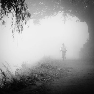Blackandwhite Bw_collection Bycikle Mist Silhouette