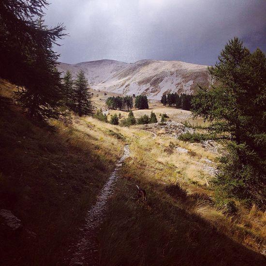 Mountains Picoftheday Allos Cheval Blanc