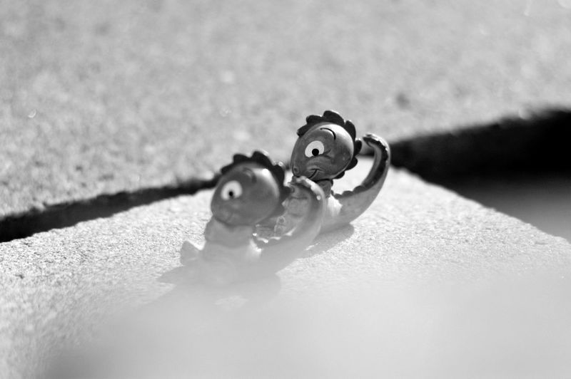 childhood memories 😄 Dino Dinosaur IDENTICAL TWINS Kinder Mirrored Black And White Blackandwhite Childhood Close-up Cute Double Figurine  Focus On Foreground High Angle View Identical  Kinder Surprise Nostalgia Same  Same Same But Different Selective Focus Shadow Still Life Twin Twins Young Adult EyeEmNewHere
