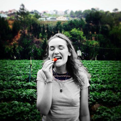 Strawberry Fields Forever Strawberryfields Phycodelic