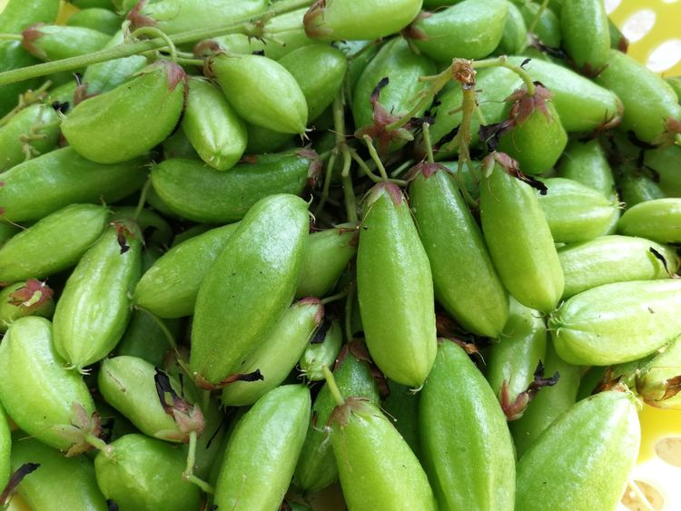 Food And Drink Food Green Color Healthy Eating Freshness Abundance No People Market Close-up Day Outdoors Nature Ready-to-eat Bilimbi ตะลิงปลิง
