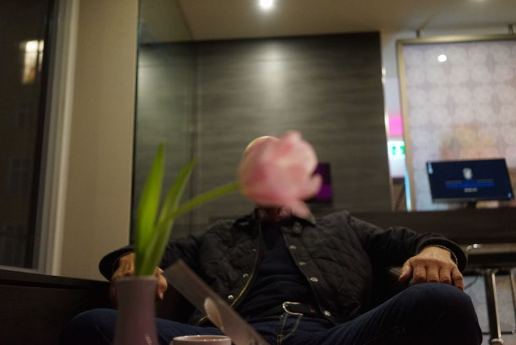 Pink rose in front of man sitting in office
