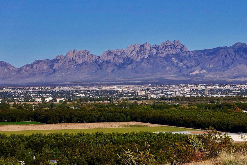 Las Cruces and the Organ Mountains in the USA. City Clear Sky Las Cruces New Mexico Trees USA Beauty In Nature Day Fields Landscape Mountain Range Nature No People Organ Mountains Outdoors Scenics Tranquil Scene Tranquility