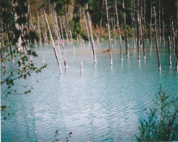 120 Film Eyemphotography Film Japan Camera EyeEm Nature Lover Blue