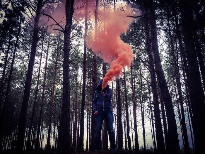Person holding smoke bomb and standing on field against trees