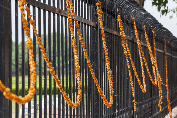 Close-up of garlands hanging on railing