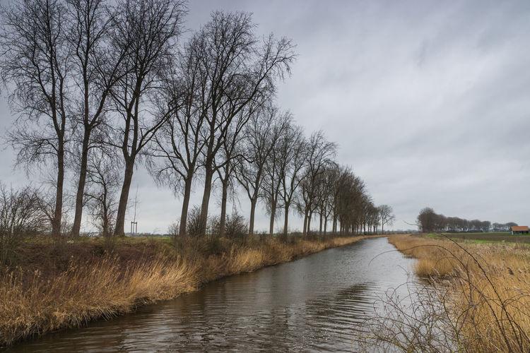 Kanaalweg, Sluis in a windy day EyeEm Market © Water Channel Landscape Winter Windy Day Sony A77ii Zeeuws Vlaanderen Zeeland  The Netherlands Tranquility