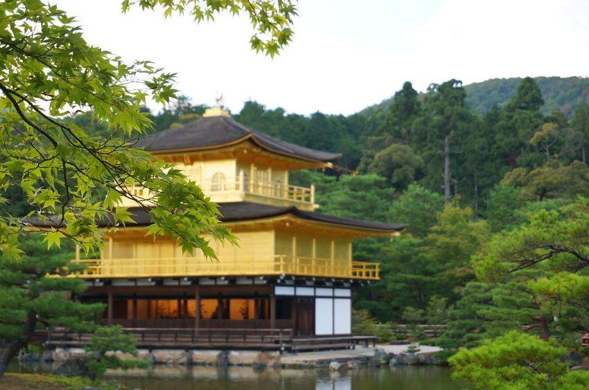 Gold Kinkakuji Temple History Kinkakuji Golden Pavilion  Building Exterior Kyoto, Japan Kyoto Japan Cultures Tradition Temple Architecture