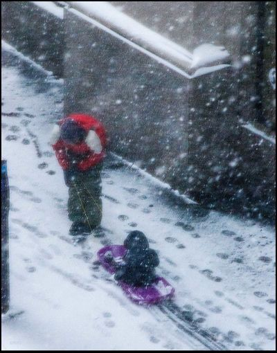 ArmChair Photographer - 1/23/16 1st Blizzard Of 2016 Farther & Son High Angle View Lazy Photographer Outa The Window Recreational Pursuit Sleigh Riding NYC Style