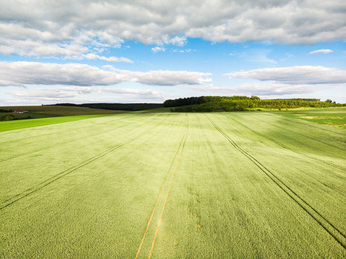 Countryside Country Landscape Aerial View Aerial Arerial Photography Tree Rural Scene Agriculture Field Tire Track Crop  Sky Landscape Cloud - Sky Grass Parallel Cultivated Land Agricultural Field Cereal Plant Farmland Track - Imprint Plantation Farm Plowed Field Blooming Growing Ear Of Wheat Wheat