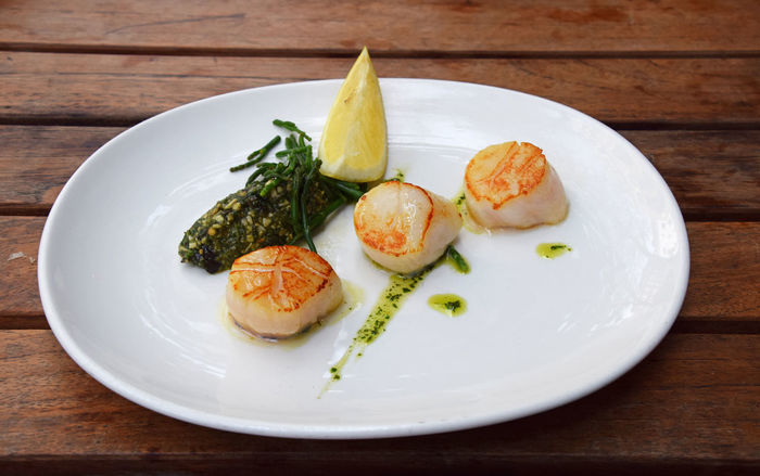 One portion of tasty scallops seafood Cuisine France Seafood Close-up Day Delicious Delicious Food Fillet Fish Food Food And Drink Freshness Gourmet Healthy Eating Pectinidae Plate Portion Ready-to-eat Restaurant Scallop Scallops Scallops Dish Seafood Serving Size Table Food Stories