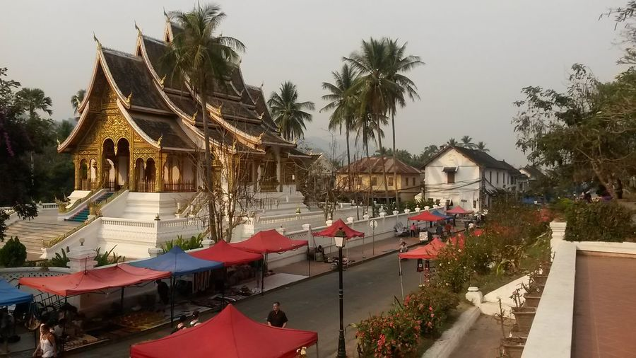 Luang Prabang, Laos Architecture Belief Building Building Exterior Built Structure City Day Group Of People Luang Prabang Old Quarter Nature Outdoors Palm Tree Place Of Worship Plant Religion Sky Spirituality Tree Tropical Climate