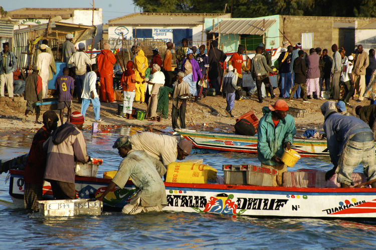 Palmarin Senegal Palmarin West Africa Africa Day Large Group Of People Men Nautical Vessel Outdoors Real People Senegal Water