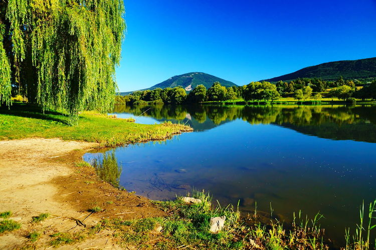 The lake and the Mount Pilis in the summer Happy Beauty In Nature Blue Clear Sky crystal clear Day Deep Blue Lake Lakeside Landscape Nature No People Non-urban Scene Noon Outdoors Pilis Reflection Scenics Shore Sky Summer Tranquil Scene Tranquility Tree Water